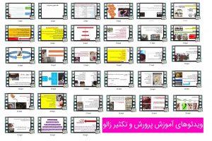 ویدئوهای آموزش پرورش زالو