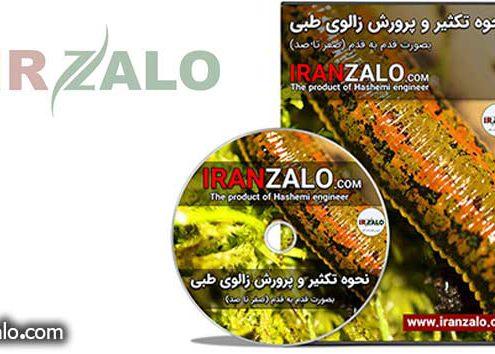 دانلود آموزش پرورش زالوی اصیل ایرانی