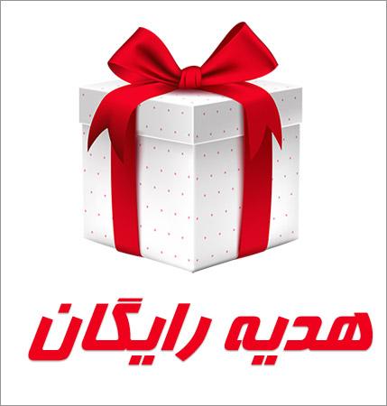 هدیه ایران زالو